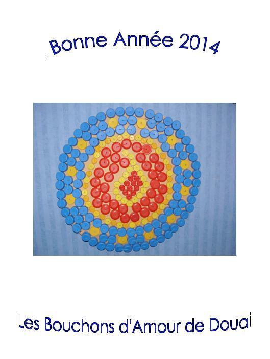Voeux Douai 2014